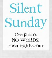 #SilentSunday Week 31