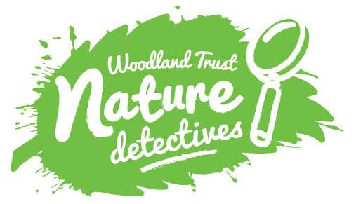 Image result for nature detectives