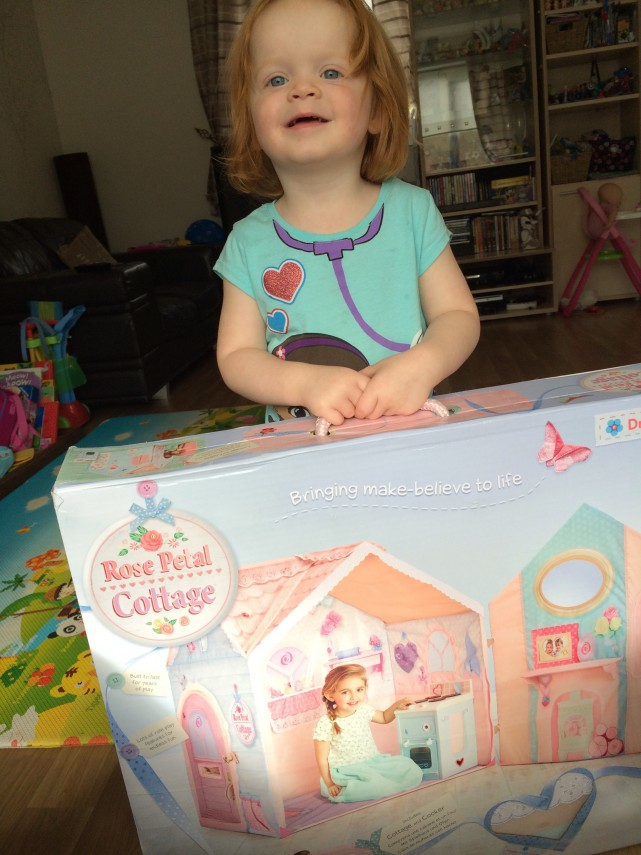 Dream Town Rose Petal Cottage Review