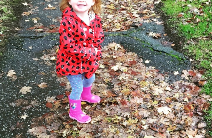 Leaves and Puddles