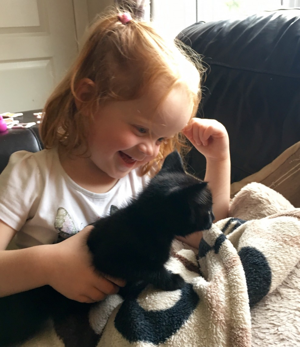 Toddler and Kitten