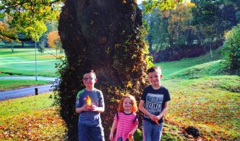 Trees, Supermoon And Hospital Visits – Our Weekly Photos Week 47