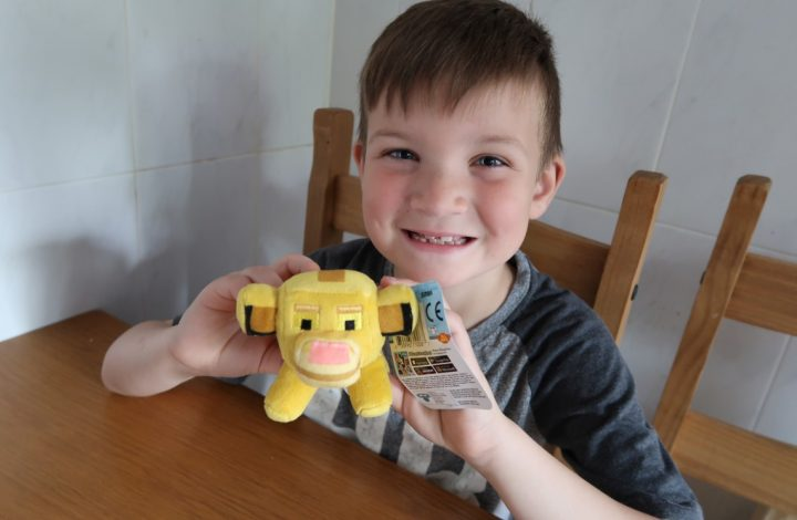 Disney Crossy Road Toys Collection – Review