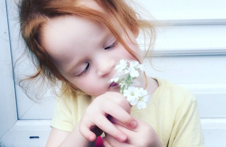 Taking Time To Smell The Flowers, Manchester And Skies – Our Weekly Photos Week 22