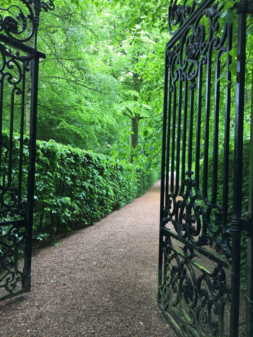 Entering the magic of Bowhill