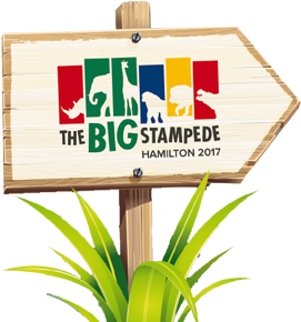 The Big Stampede In Hamilton Fun For All The Family