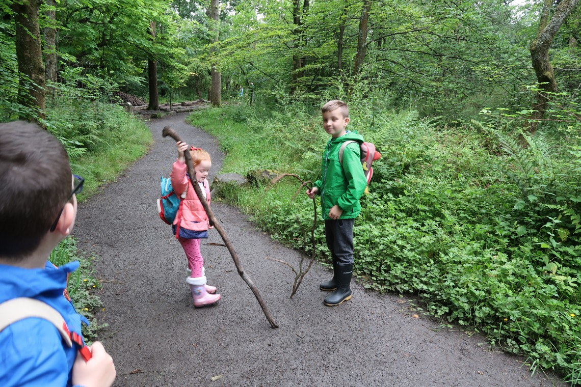Walking Sticks are essential