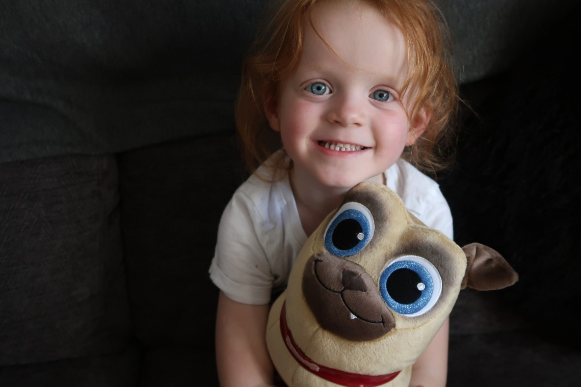 Puppy Dog Pals Plush
