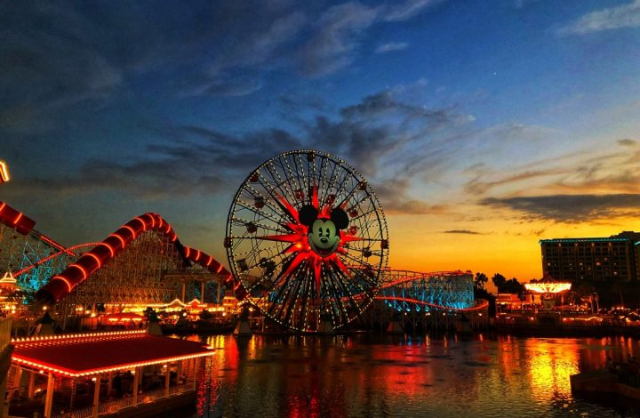 Disney, Baseball And A California Adventure Our Weekly Photos – Week 28
