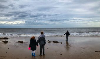 Beach, Castle, Cute Puppy And a Pink Sky Our Weekly Photos – Week 42