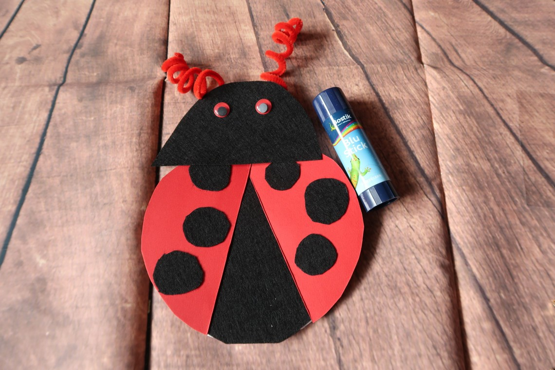 Ladybird Craft